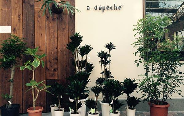 アデペシュ植物園