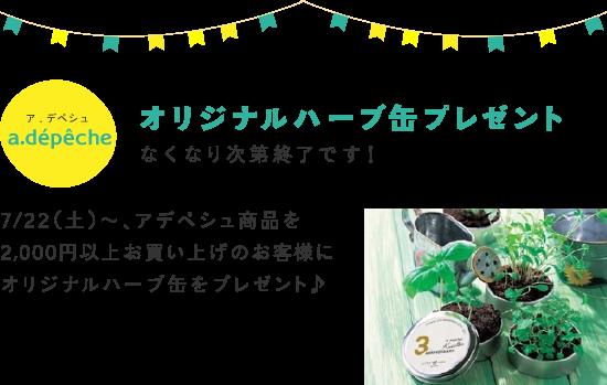 a.depeche オリジナルハーブ缶プレゼント なくなり次第終了です! 7/22(土)〜、アデペシュ商品を2,000円以上お買い上げのお客様にオリジナルハーブ缶をプレゼント♪